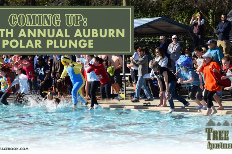 Coming Up: Eighth Annual Auburn Polar Plunge