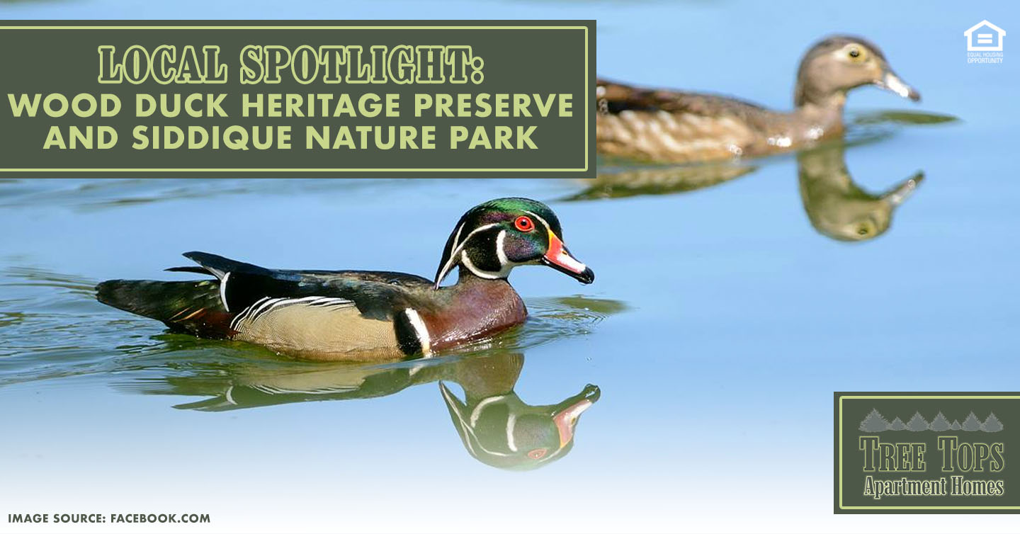 Wood Duck Heritage Preserve and Siddique Nature Park